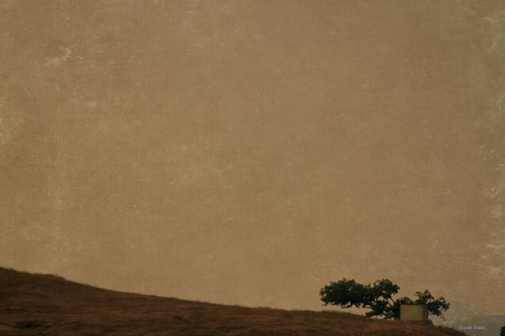 nasik landscape fs