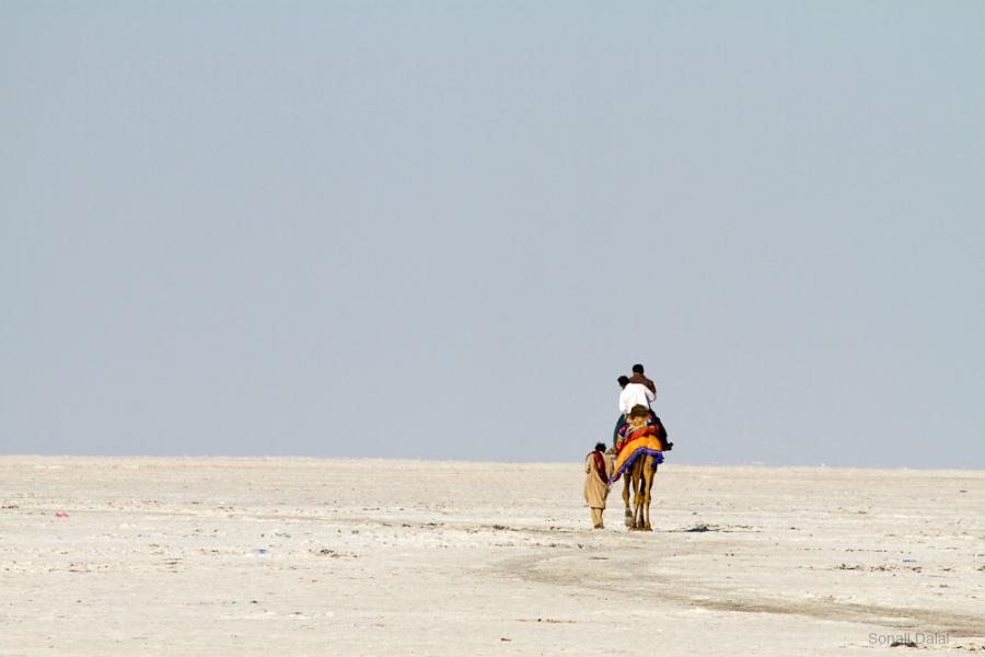 White Desert Of Kutch