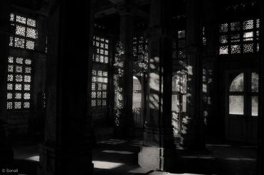 Dance of the light..